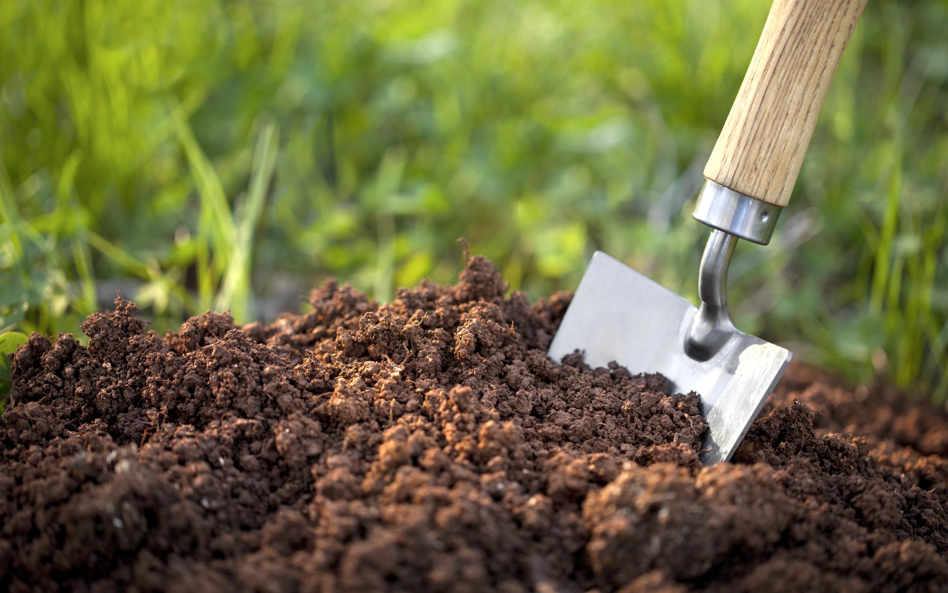 Способы внесения органических удобрений. 7. Составление плана распределения  органических удобрений по севооборотам. Определение доз и места внесения  органических удобрений.